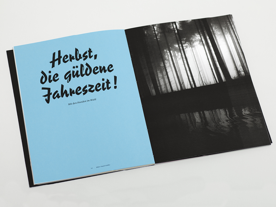 Website_Cases_Angstmagazin11