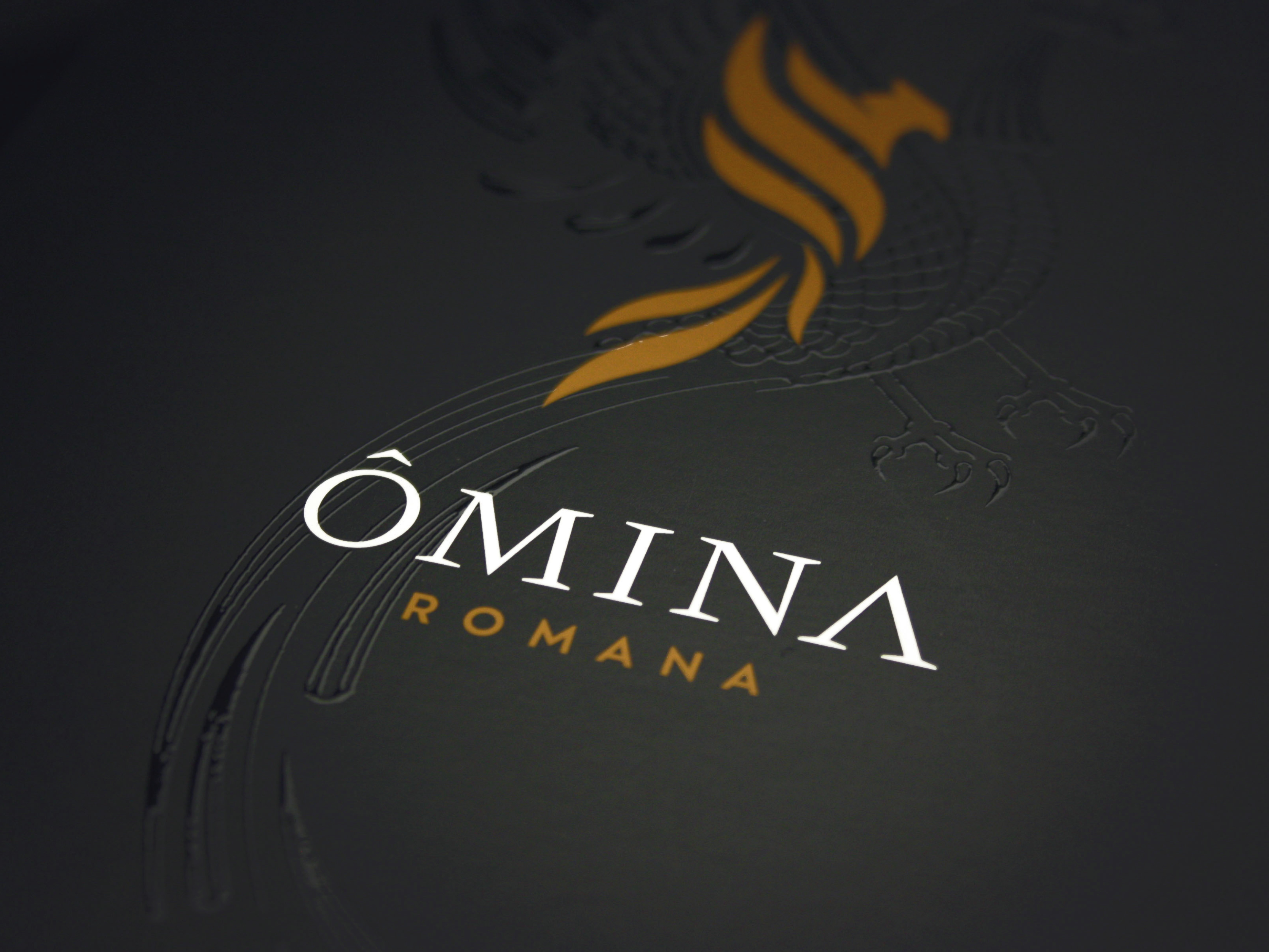 Website_Cases_Omina